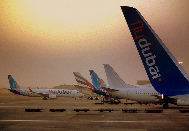 fly dubai Go places with holidays by flydubai lose yourself in the vast savannas of africa discover the hidden treasures of the central asian steppes revel in the urban delights of europe's historic capitals explore the dense jungles of the indian subcontinent or fall in love with the eclectic arabian cities of the middle east in this fascinating.
